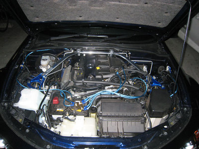 2007111201.jpg