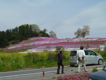 ロードスターで芝桜と榛名山とペヤング
